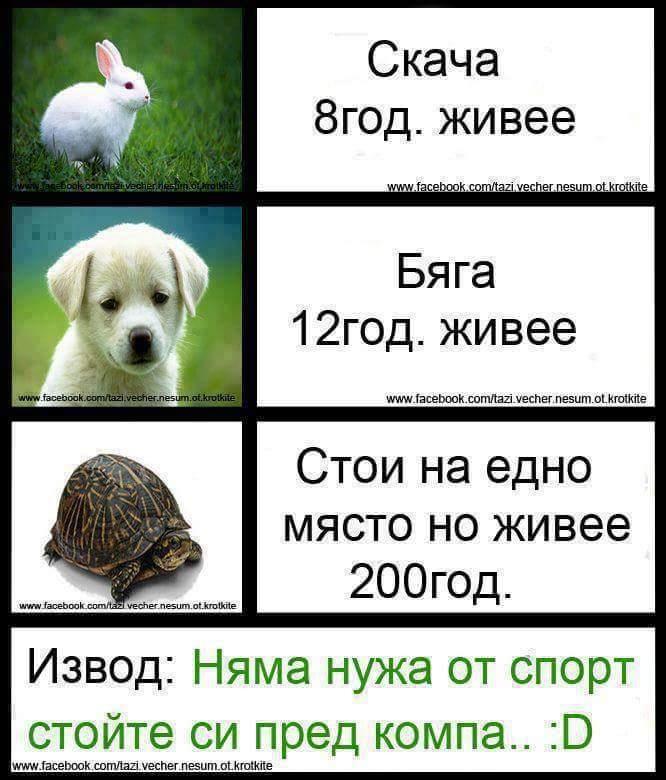 10665888_906986162683667_8006215066072312082_n