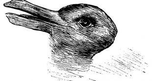заек или патица тест