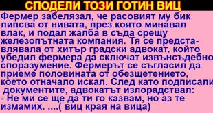 a1211aadd_text