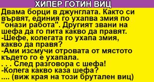 add_5464564645text