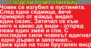 adfgdfgdgdfd_text